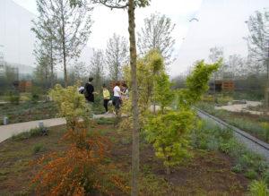 expo-2015-padiglione-polonia-verde-leca-